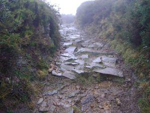 Calzada romana a la entrada del castro de Espina del Gallego