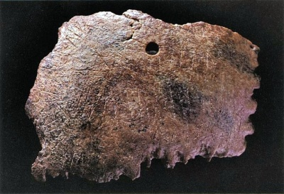 The Ribe skull fragment (source)